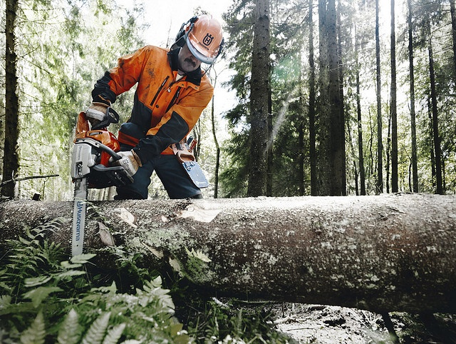 Limbing with a Husqvarna 346xp.