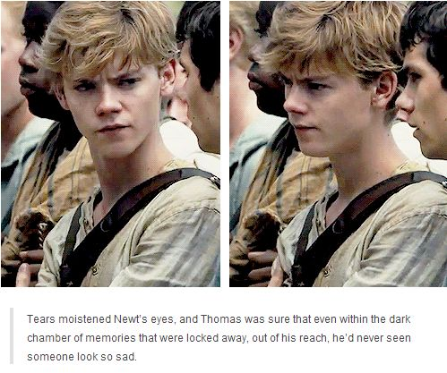 Thomas Sangster is an amazing actor and is perfect for Newt and no one can tell me otherwise