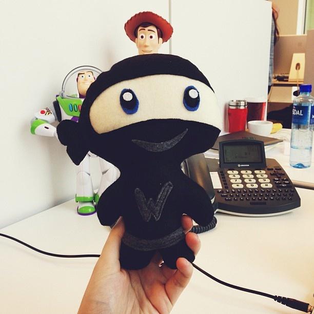 Lasse fikk en ninja av #woothemes. De er også ganske kule på #Wordpress.