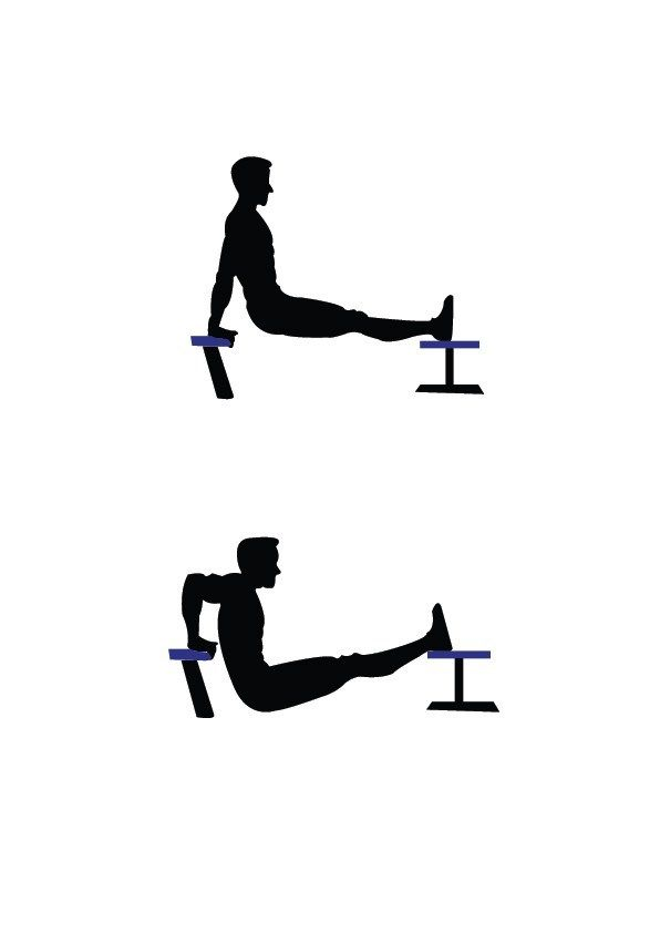 Chair Dips Chest Workouts Chest Workout At Home Fitness Body