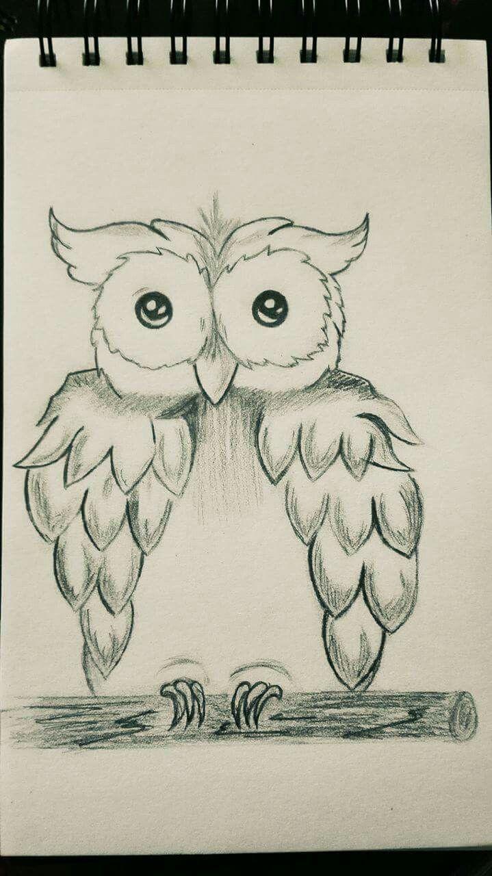 Sweetie owl