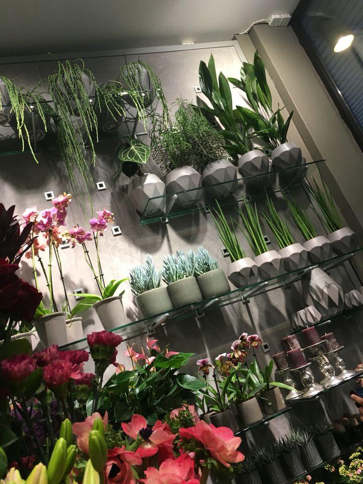 Hyller med blomster