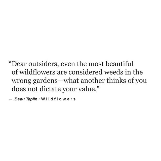 ...even the most beautiful of wildflowers are considered weeds in the wrong gardens ...