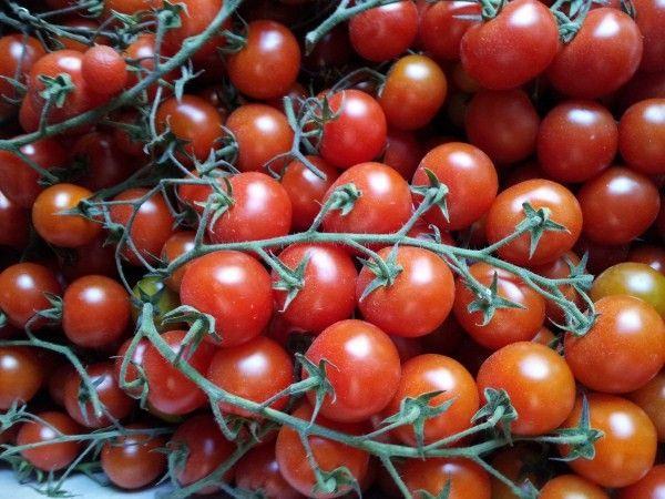 E possibile congelare i pomodori Come e per quanto tempo si conservano il pomodoro surgelato come fare per mantenere i pomodori a lungo tecniche