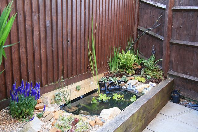 Raised garden pond via flickr urban garden ideas pinterest for Raised garden pond designs