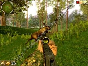 If you are a serious gamer and love hunting, you should have little problem finding deer hunting games free to play now. There are many online gaming sites.