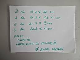 Resultado de imagem para capa para caderneta de vacinação como fazer