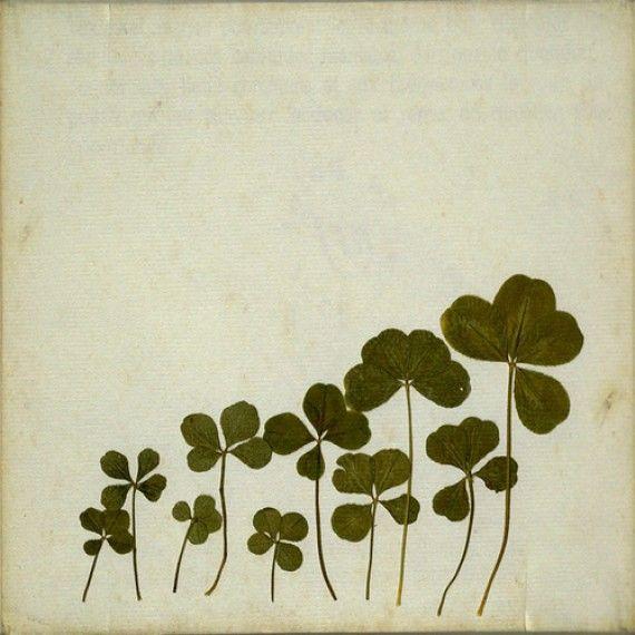 Thank You Littlebodybigheart Done At Goodlucktattoo: 1000+ Images About Irish Tattoos On Pinterest