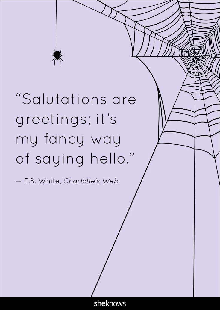 """""""Salutations are greetings; it's my fancy way of saying hello."""" 