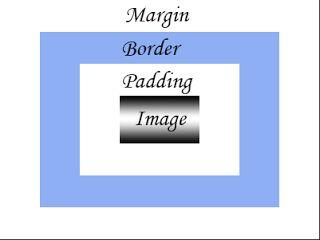 CSS Box Model, CSS Margin, CSS Padding