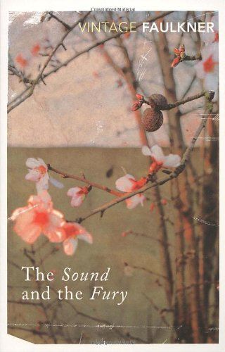 The Sound And The Fury (Vintage Classics) by William Faulkner