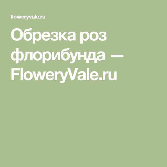 Обрезка роз флорибунда — FloweryVale.ru