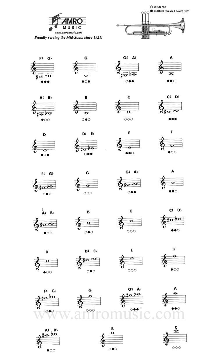 Trumpet Fingering Chart...In case you didnt know!