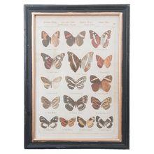 Clayre & Eef Schilderij Kunststof Zwart 40 x 55 cm - 15 Vlinders