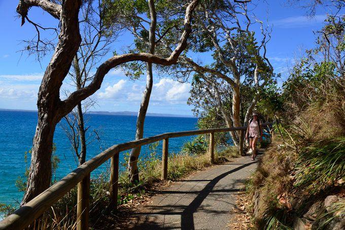 10 Best Walks With A View   Must do Brisbane