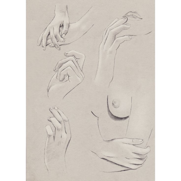 Hand Study www.kellythompson.co.nz