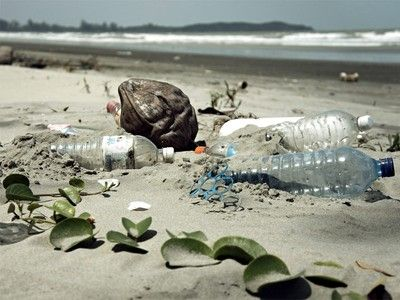 'Biodegradable' plastics are not so great for the oceans, says UN