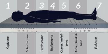 bodyguard anti kartell matratze 7 zonen matratzenkern bodyguard anti kartell matratze. Black Bedroom Furniture Sets. Home Design Ideas