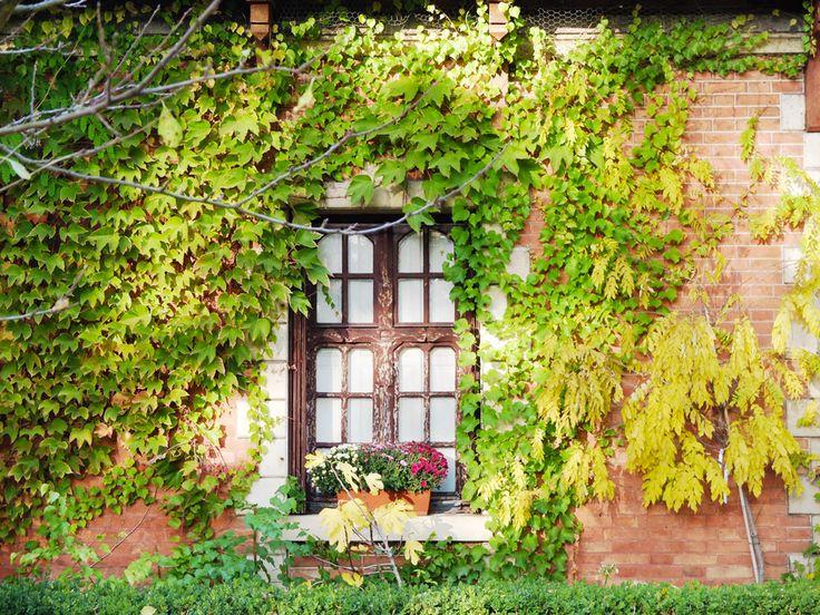 Paris bucolique #11 : les jardins de Bagatelle | Les flâneries d'Aurélie