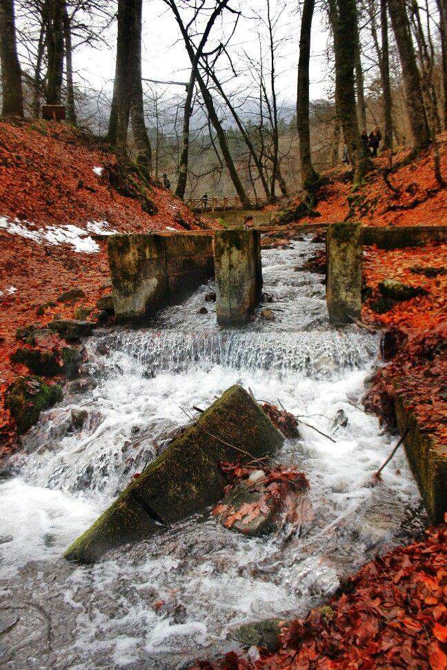 #bolu #7goller #doğa #photo #fotoğraf #akarsu
