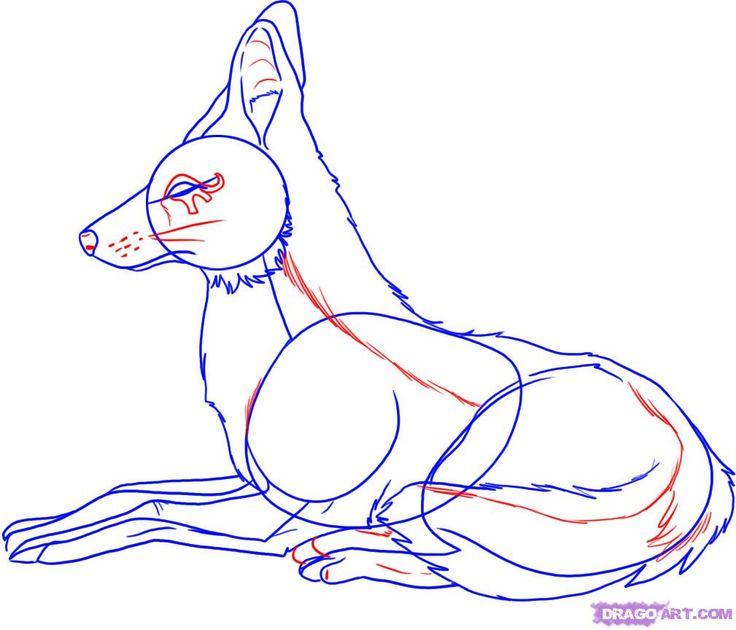 Image result for egyptian jackal