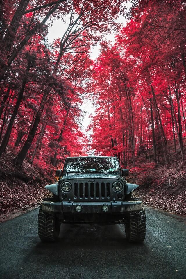 The plus side of being a photographer and a jeeper. #jeeplife