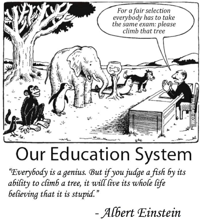 Ons onderwijssysteem
