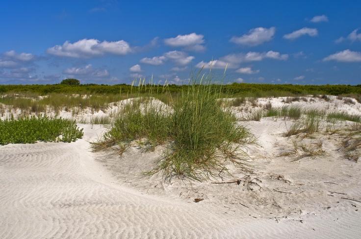 Untouched sand dunes along Little St. Simons Island beach.  www.GoldenIsles.com