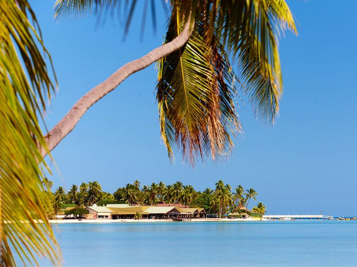 Located in the beautiful Mamanuca Islands is Plantation Island Resort, Fiji  www.islandescapes.com.au