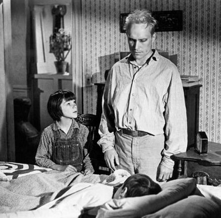 atticus finchs portrayal in to kill a mockingbird by harper lee essay In to kill a mockingbird , author harper lee uses memorable  you learn about her father atticus  full glossary for to kill a mockingbird essay.
