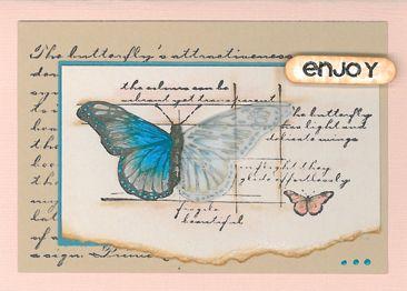 Stamp-it Australia: 4296F Butterfly Sketch, siset030 Enjoy, siset34 Butterfly Script - Card by Susan