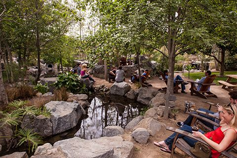 stone brewery escondido - (for our future Stone garden)
