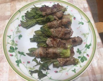 山菜の王様と言われるタラの芽!これ、肉巻きにすると、口いっぱいにタラの芽の香りが広がって、もうたまらん美味しいさ!収穫してすぐの虫干し、下処理から、レシピまで紹介しちゃいます☆