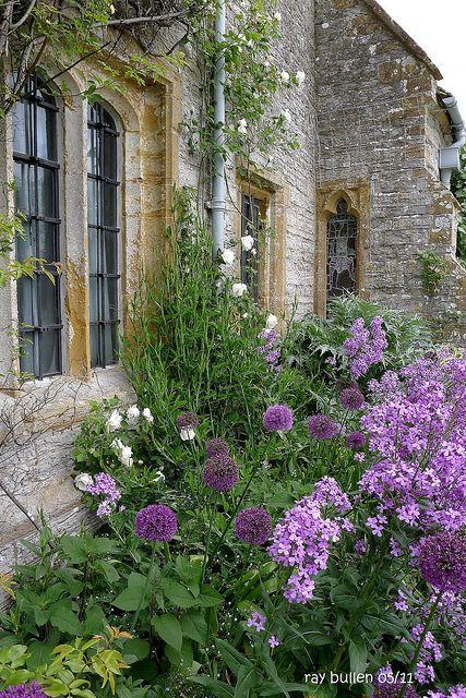 Somerset... Love purple in a Garden