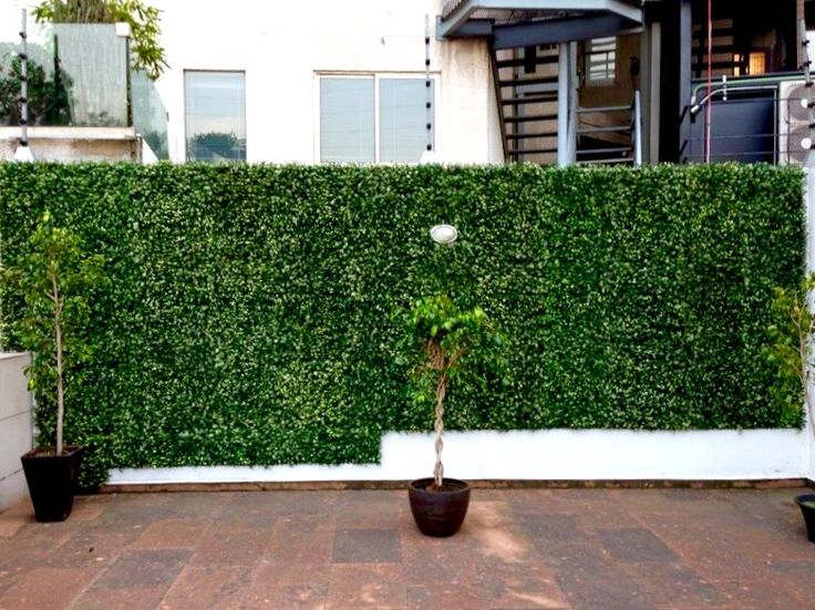 17 best images about privacy solutions with greensmart for Green privacy fence ideas