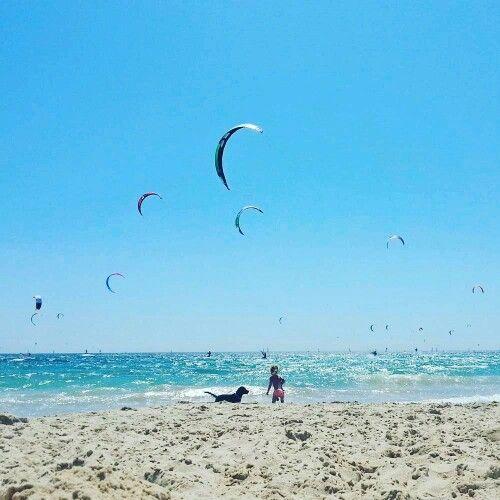 Bienvenidos a la #primavera #Guau ... #sol #playa #perros #ninos #bañadores #kitesurfing  y mucho #EspírituGuau