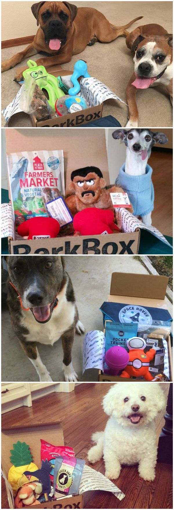 Have a fun themed box full of the best toys & all-natural treats delivered every month! BarkBox pup testers and pup-ruvin' hoomans spend months selecting the best products to help keep your pup happy and healthy.