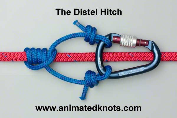 Animation: Distel Hitch Tying (Climbing)