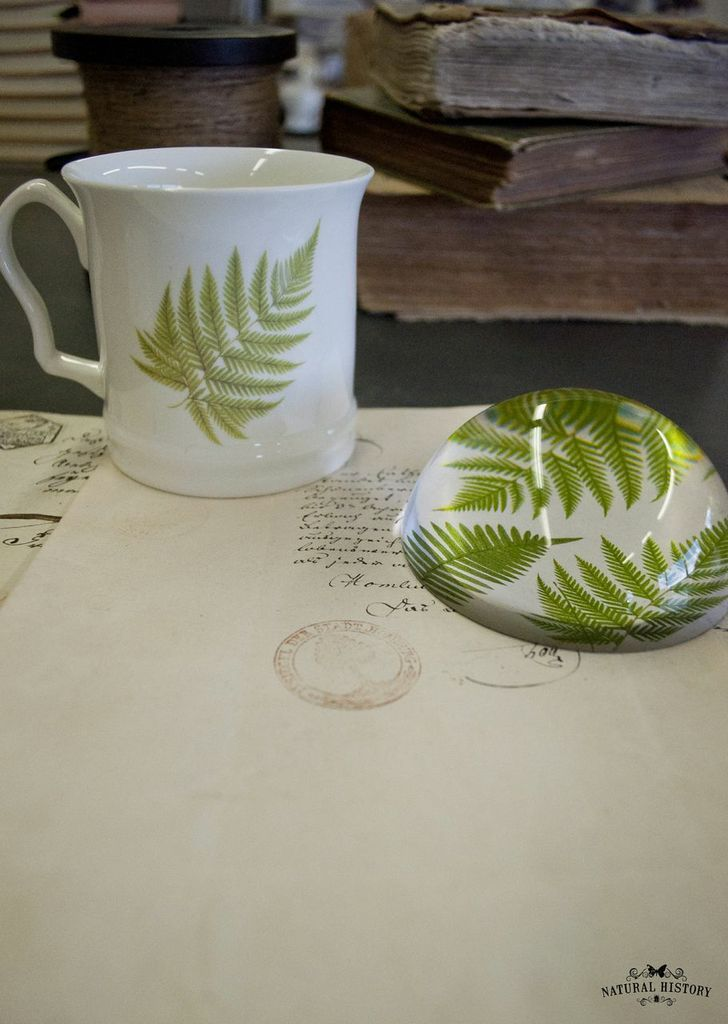 Botanical Ceramics & Paperweights