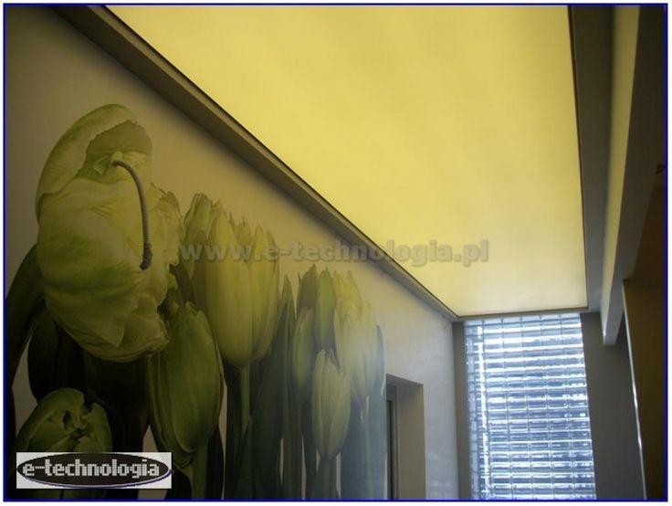 korytarz aranżacje - korytarz w gabinecie - korytarz w salonie e-technologia