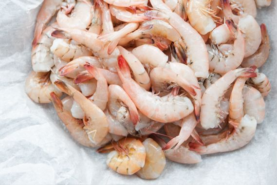 White, Brown, Pink, Red: Learn the Differences in Alabama Gulf Shrimp