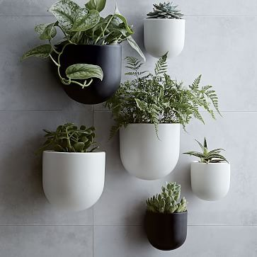 Ceramic Wallscape Planters  Can you keep plants alive? Because herbs in these would look so great next to the window... Plus, there's light and water right there...