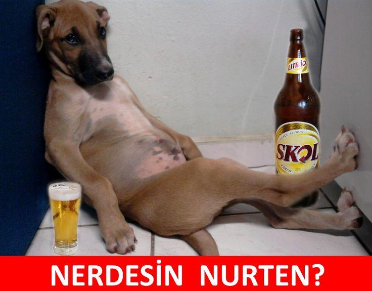 NERDESİN NURTEN? :) #mizah #matrak #espri #komik #şaka #gırgır #sözler #güzelsözler #komiksözler #caps