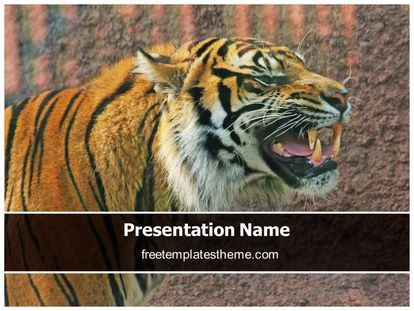 14 best free wildlife animals powerpoint ppt templates images on download free tiger powerpoint template for your powerpoint presentation toneelgroepblik Choice Image