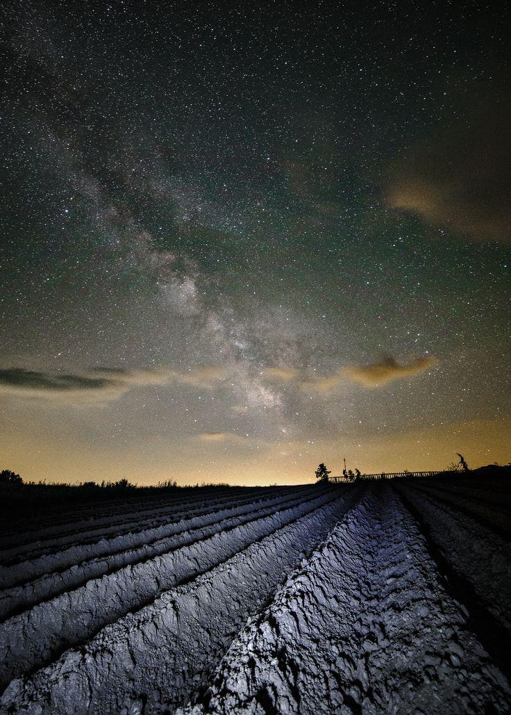 Potato star-fields