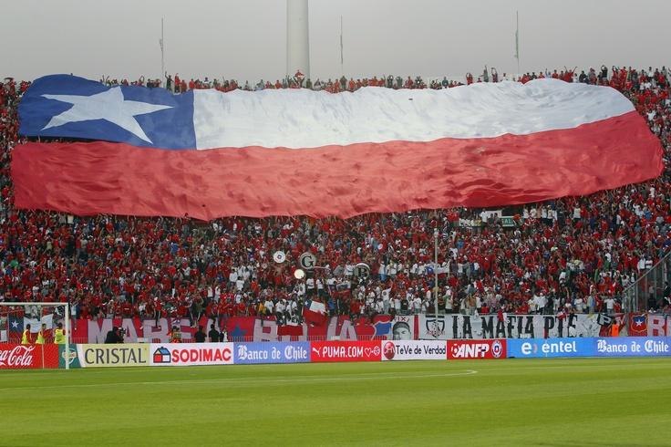 Garra Blanca alienta a Chile