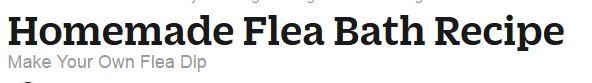 Homemade Flea Bath - Make Your Own Flea Dip