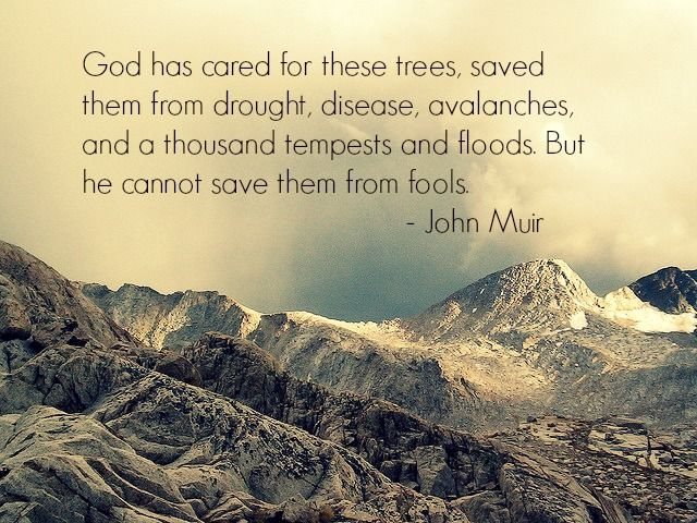 A Tribute to Environmentalist Legend John Muir