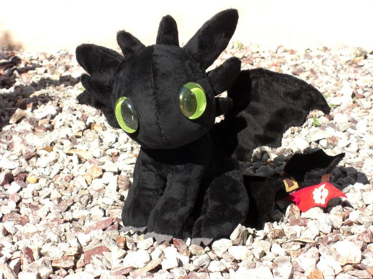 Toothless plushie. I haven't been real big on stuffed animals, but this