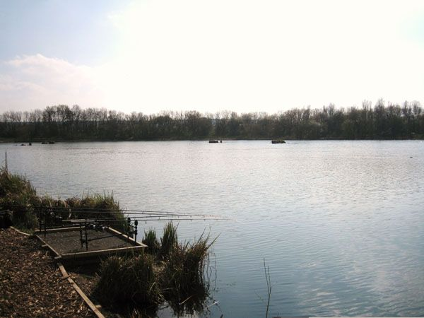 Birchmere lake - THAMESMEAD TOWN ANGLING CLUB - Birchmere lake is 11 acres and is situated in the lovely park setting in Thamesmead south east London There are carp over 20lb and other species makin... Check more at http://carpfishinglakes.com/item/birchmere-lake-thamesmead-town-angling-club/